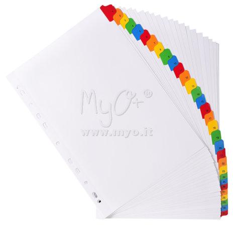 Divisori in cartoncino colorato