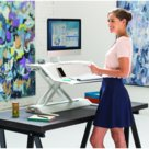 Postazione di Lavoro Sit-Stand Lotus, 83,19x13,97x61,6 Cm, Acciaio